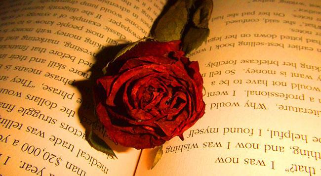 Как засушить розы, сохранив цвет и форму видео