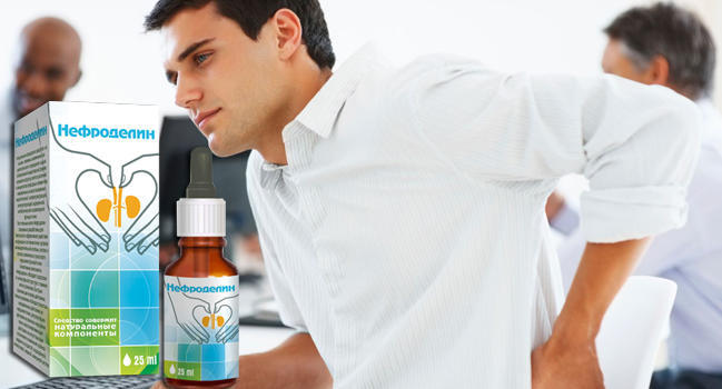 Нефроделин для восстановления почек купить
