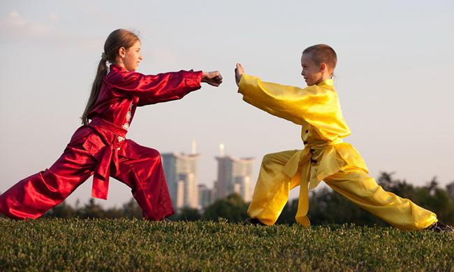 Ушу для начинающих, видео уроки, тренировки, упражнения. стиль борьбы